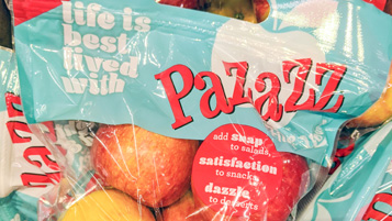 pazazz_bb_1.30.20-wide